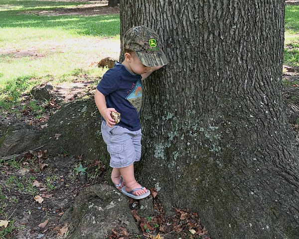 Gavin exploring the park | rainerlife.com