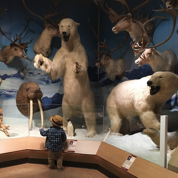 Gavin at World of Wildlife Museum | rainerlife.com