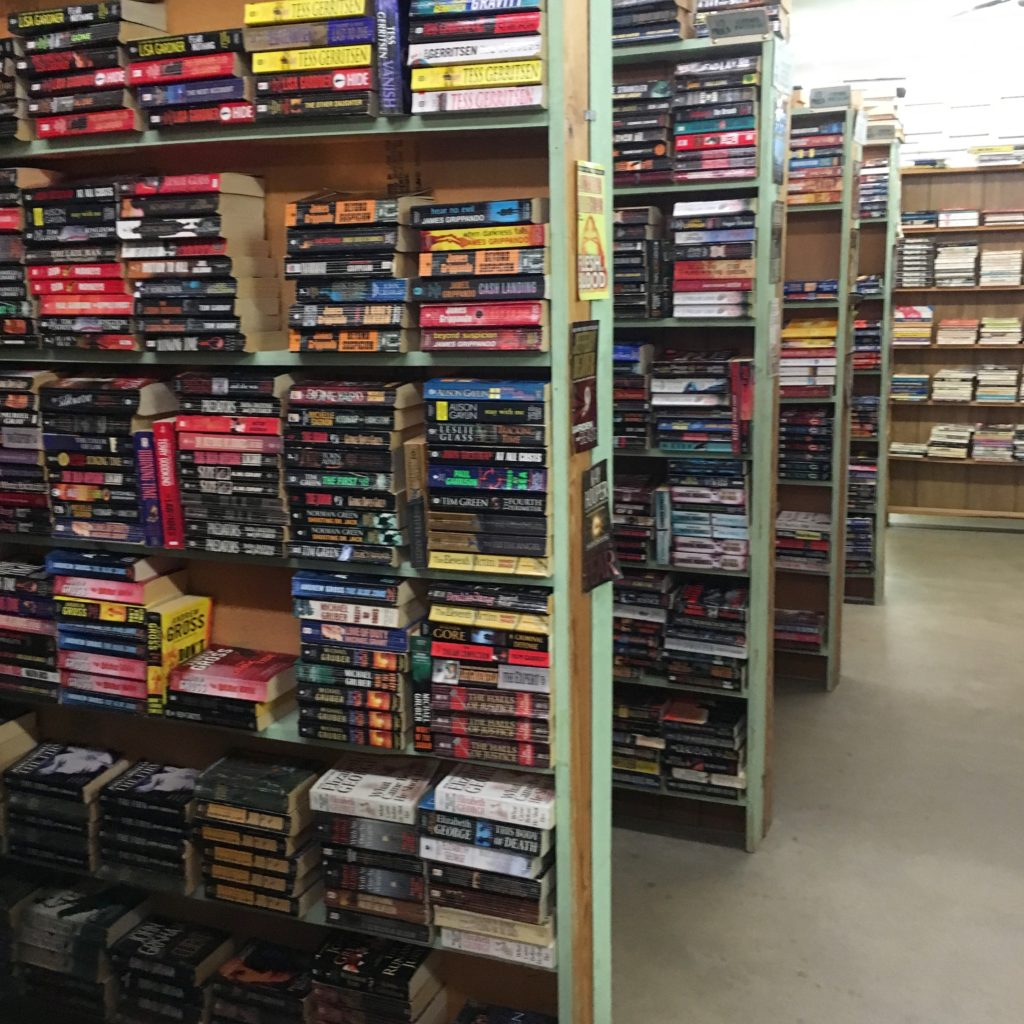 Books in a local used bookstore | rainerlife.com