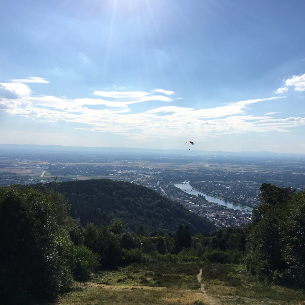 View of Heidelberg from The Königstuhl | rainerlife.com
