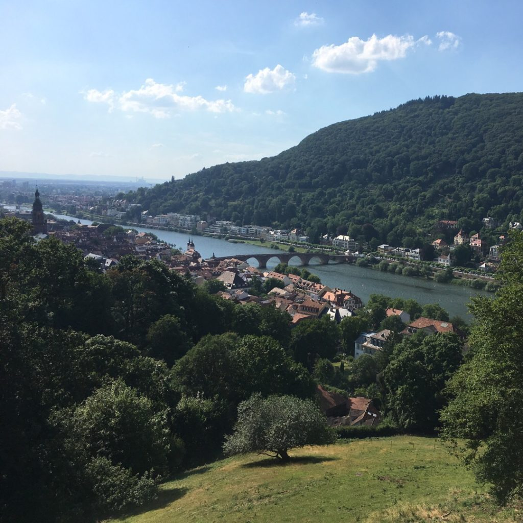 View of Heidelberg and Old Bridge from Heidelberg Castle (Heidelberger Schloss) | rainerlife.com