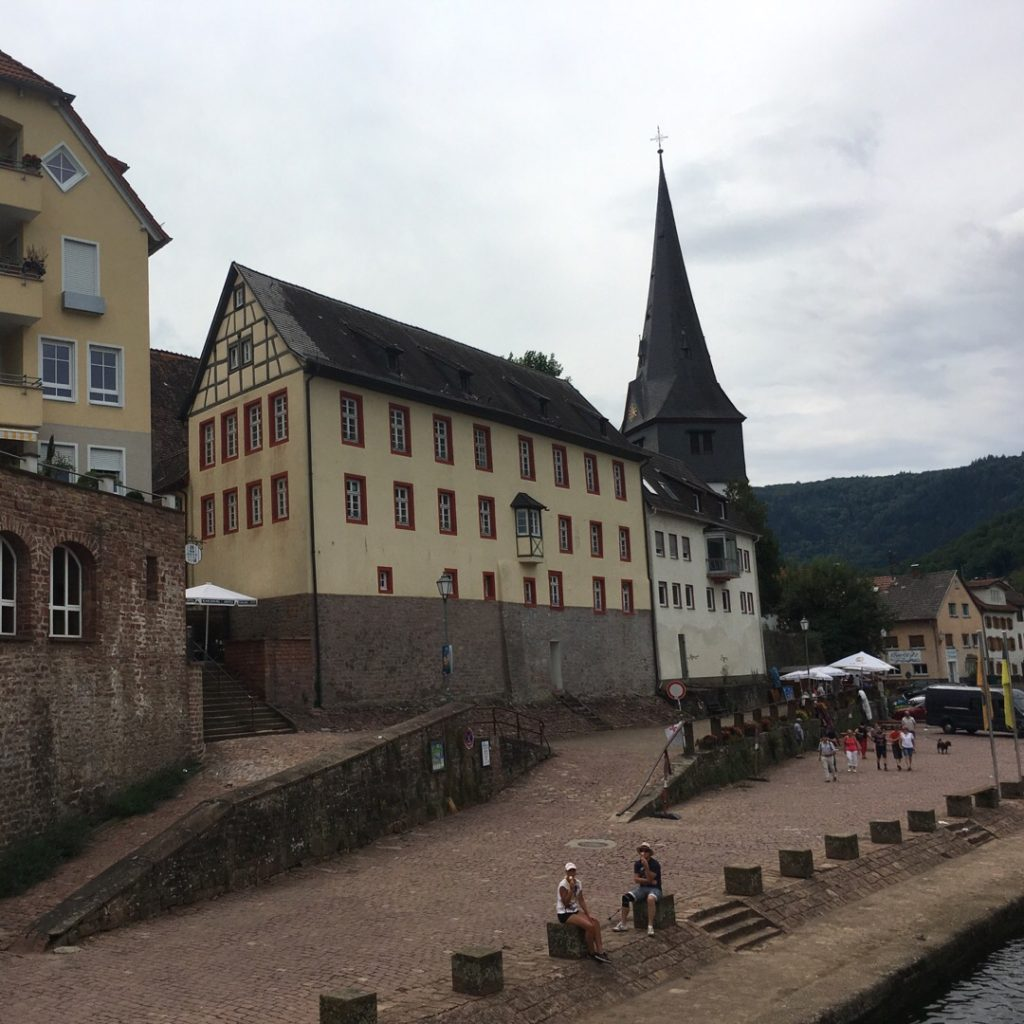 Neckargemünd on Neckar River | rainerlife.com