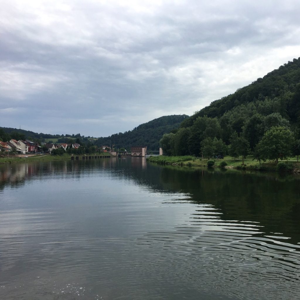 View from Neckar River Cruise | rainerlife.com