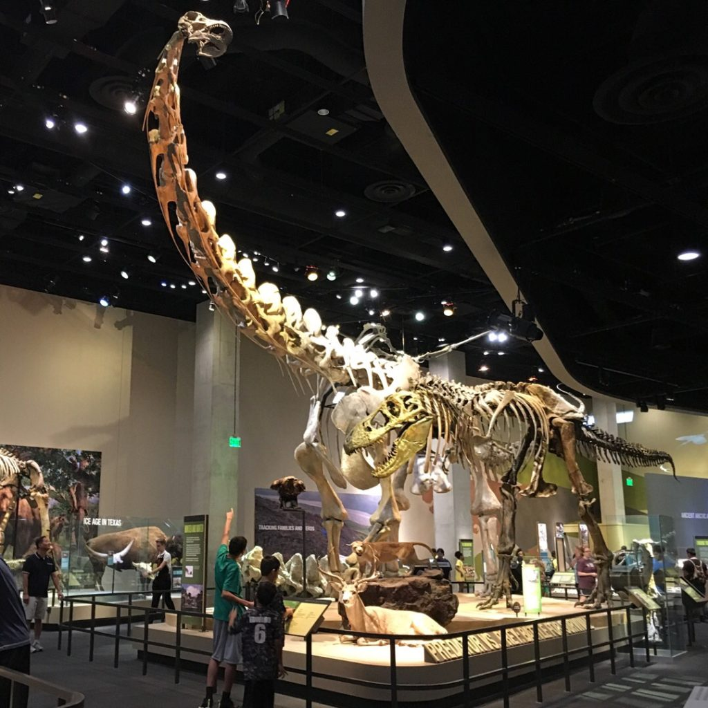 Perot Museum of Nature & Science | rainerlife.com