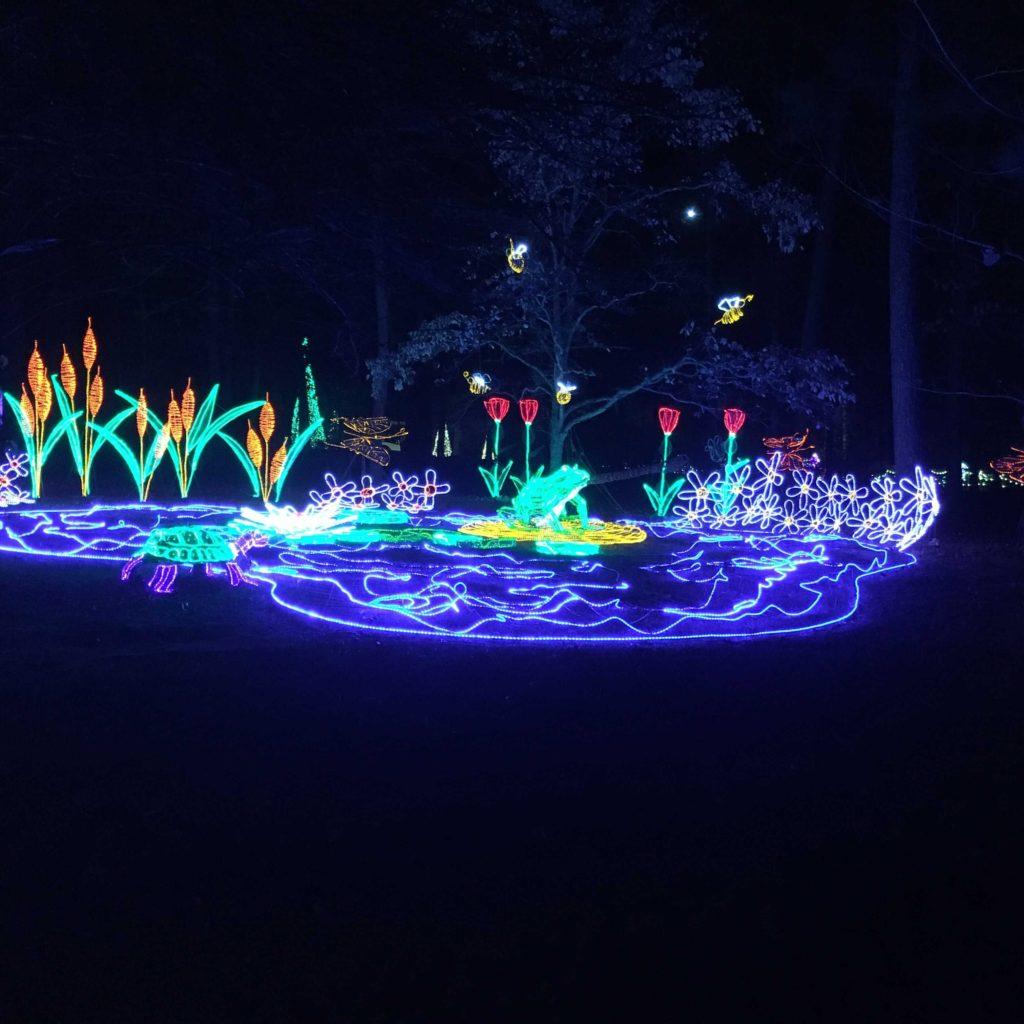 Garvan Gardens Christmas Lights 2017 | rainerlife.com